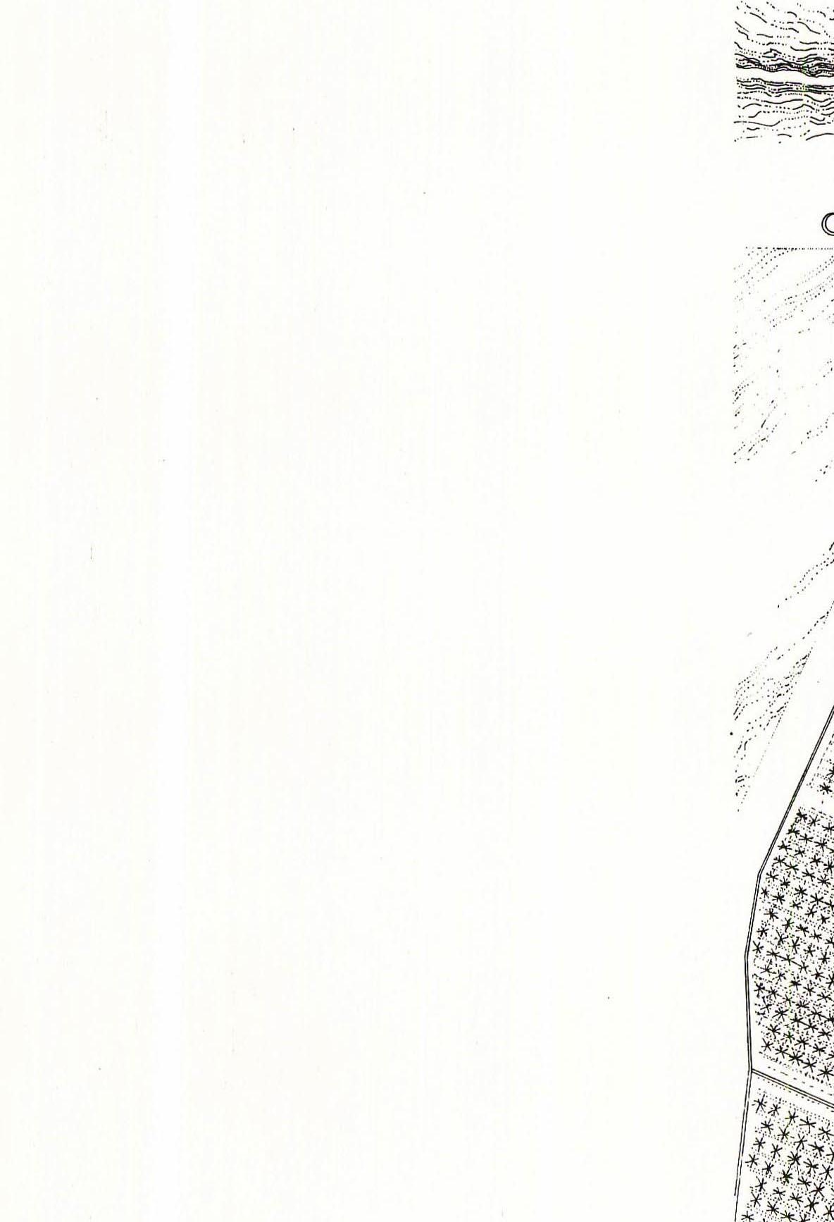 danielvillalobos-valladolid-blueprints-renaissance-d.1