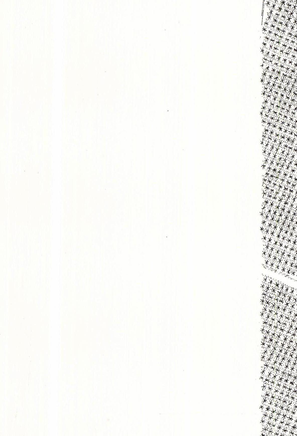 danielvillalobos-valladolid-blueprints-renaissance-e.1
